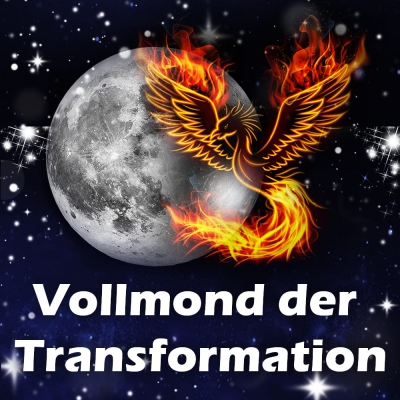 Livestream auf Antonias YouTube-Kanal